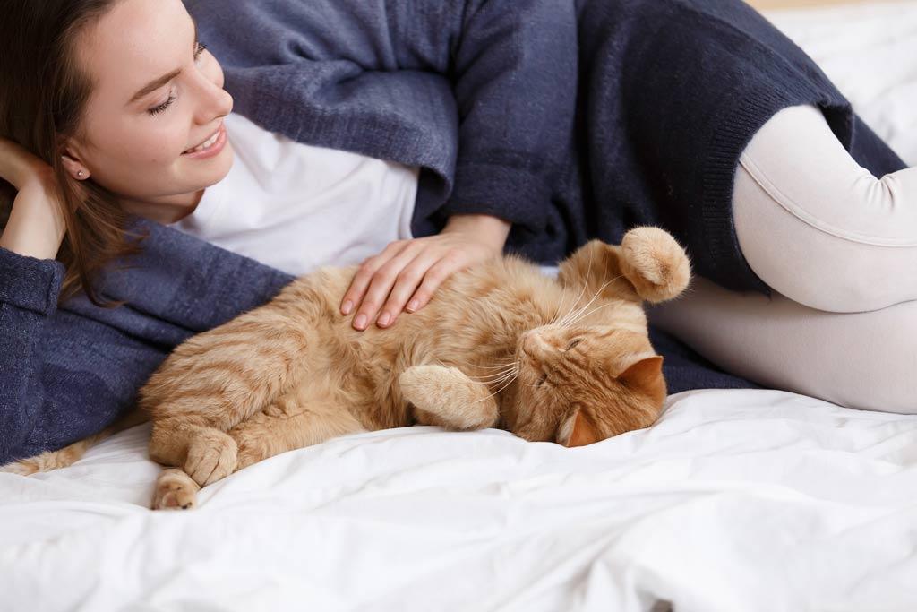 Feline Focus: How to Speak Cat