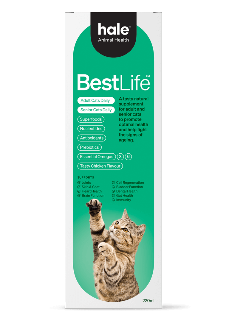 Best Life Adult and Senior Cats